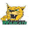 Wilmington University (Del.) (DH)